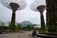 Supertree Grove, Gardens by the Bay, Singapore - 20120617-01.jpg