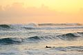 Surfing during the South swell (8933636146).jpg