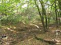 Svépravický potok, plot II.jpg