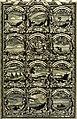 Symbolographia, sive De arte symbolica sermones septem (1702) (14767545253).jpg