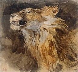 Tête de lion rugissant