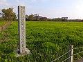 Tajimagahara Wild Primrose Field 201504.jpg