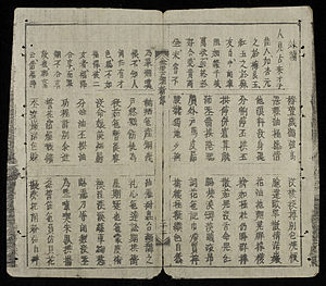 Chữ Nôm - A page from The Tale of Kieu by Nguyễn Du. This novel was first published in 1820 and is the best-known work in Nom. The edition shown was printed in the late 19th century.
