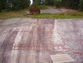 Tanumshede 2005 rock carvings 3.jpg