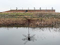 Targets at Rainham Marshes.jpg