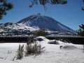 Teide Nevado.jpg