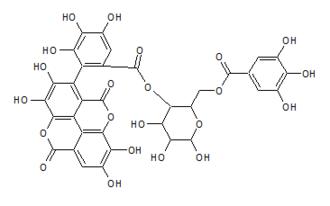 Terflavin B - Image: Terflavin B
