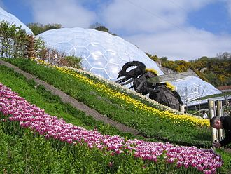 Eden Project - The Bee