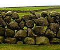 The Mourne Wall near Carrick Little - geograph.org.uk - 643385.jpg