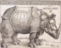 The Rhinoceros (NGA 1964.8.697) enhanced.png