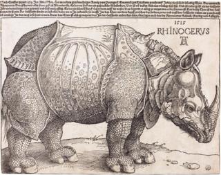 <i>Dürers Rhinoceros</i> Woodcut by Albrecht Dürer
