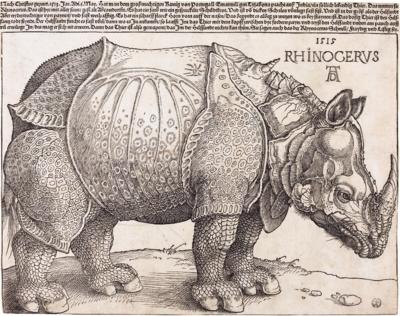 Rinoceronte (Dürer)