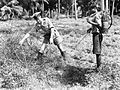 The Royal Naval School of Malaria and Hygiene Control, Nr Colombo, Ceylon, December 1944 A28178.jpg