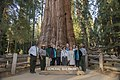 The giant General Sherman tree with Foundation members and National Park Service staff posing for a photo in front of it. (3f1a74fc-d301-4324-9629-c11391d5443c).jpg