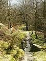 The path through Stanage Plantation - geograph.org.uk - 752697.jpg