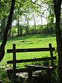 The stile at the Great Copse entrance - geograph.org.uk - 424474.jpg