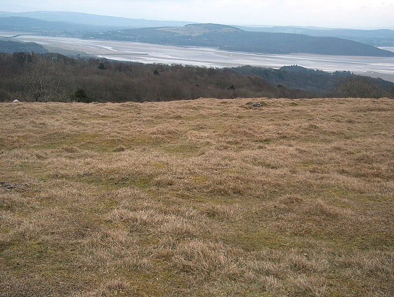 File:The summit plateau of Hampsfell - geograph.org.uk - 1747137.jpg