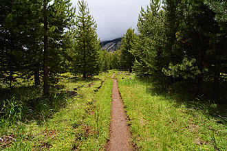 Echo Valley (California) - A trail through Echo Valley