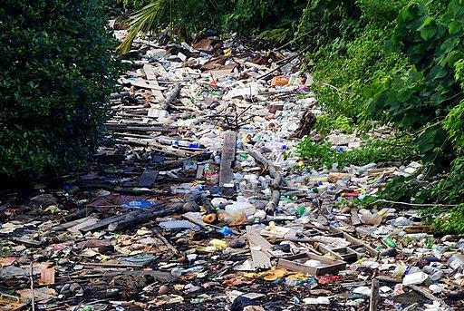 The water village. Rubbish (8619138720)