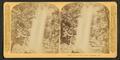 Toccoa Falls, near Tallulah, Georgia, by Littleton View Co. 2.png