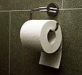 Toilet paper orientation under.jpg