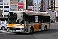 Tokushima-Bus-Hino rainbow.jpg