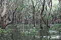 Tonle Sap Lake (9731711300).jpg