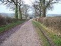 Track and bridleway - geograph.org.uk - 1613302.jpg