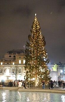 """Résultat de recherche d'images pour """"Tous les ans, un pays donne un arbre de Noël à la Grande-Bretagne, qui est placé sur la place Trafalgar à Londres. Quel pays? La Norvège."""""""""""