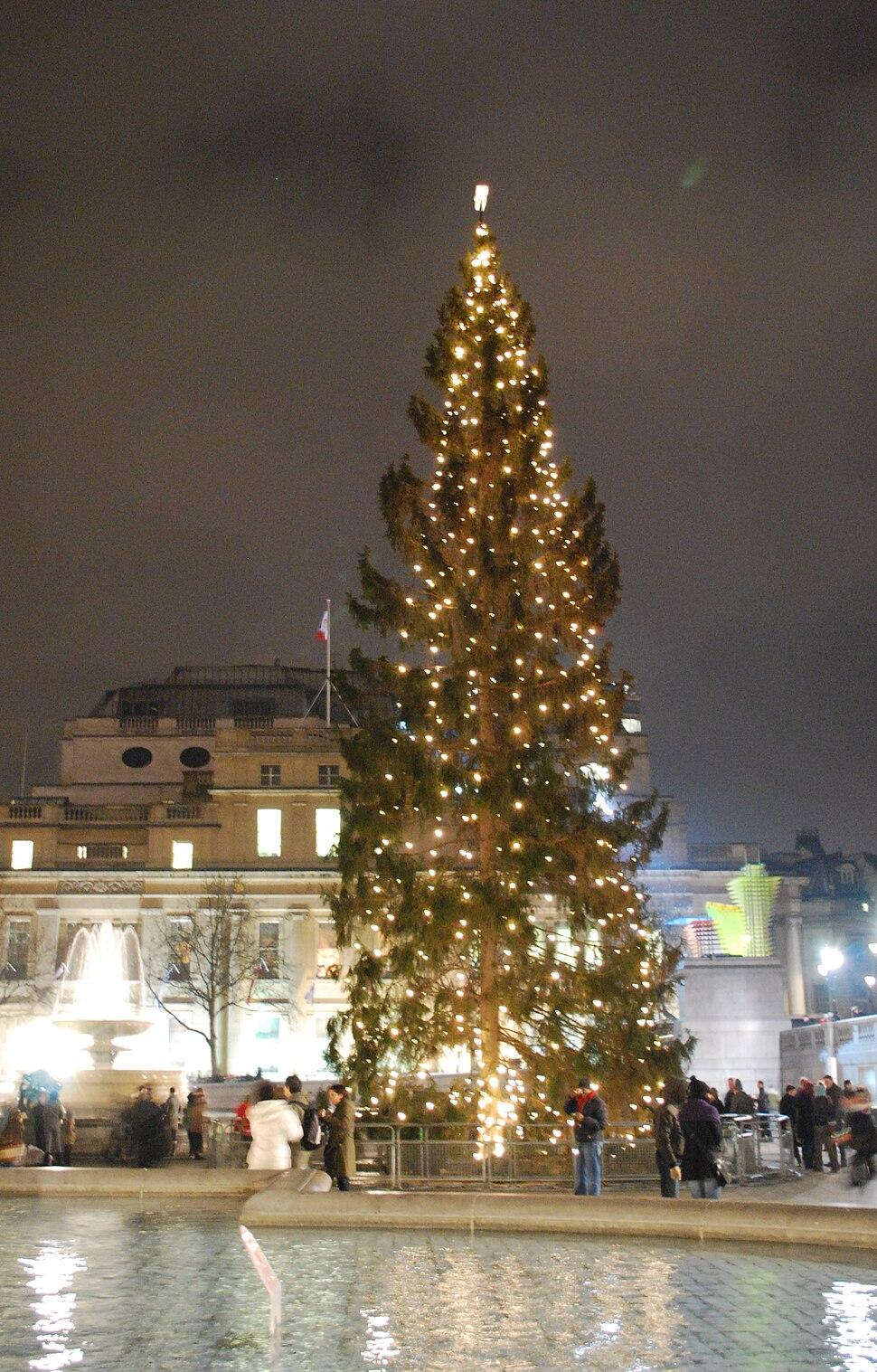 Trafalgar Square Christmas tree8