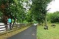 Trail - Windsor Locks Canal State Park Trail - Suffield, Connecticut - DSC04316.jpg