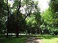 Trebisov Andrassyovsky kastiel (park)-12.JPG