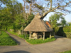 Tree shelter, East Claydon - geograph.org.uk - 410040.jpg