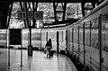 Trens 1 (39215338).jpeg