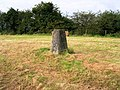 Trig Point 5913 Shapwick - geograph.org.uk - 542755.jpg
