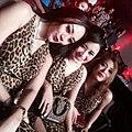 Trio macan 2014-06-13 01-27.jpg