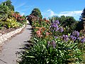 Tropical Border and Arch within Ventnor Botanic Garden - geograph.org.uk - 1009696.jpg