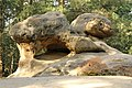 Turtle Rock, Borek.jpg