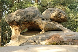 Turtle Rock, Borek.jpg