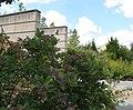 U.S. Botanic Garden in September (23718075191).jpg