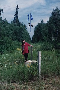 US-Canada border monument no. 919.jpg