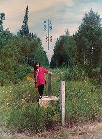 US-Canada border monument no. 919.jpg