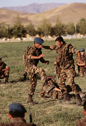 Uzbekistan Ground Forces - Uzbek soldiers practice hand to hand maneuvers