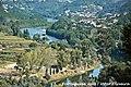 Vale do Mondego - Portugal (5770558941).jpg