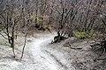 Via degli Dei, Firenzuola, discesa dal monte Gazzaro 03.jpg