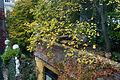 Vienna - Hundertwasser housing complex - 0365.jpg