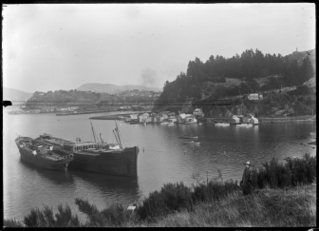 Port Chalmers Human settlement in New Zealand