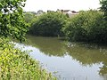 View of the canal from the path on the N side - geograph.org.uk - 1352689.jpg