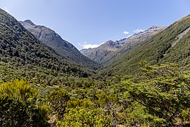 View to Mingha Valley from Dudley Knob, New Zealand.jpg