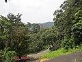 Views from Iritty - Virajpet road (4).jpg